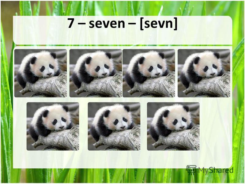 7 – seven – [sevn]