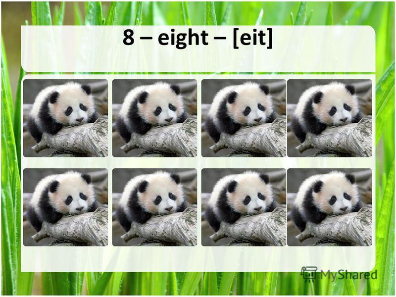 8 – eight – [eit]