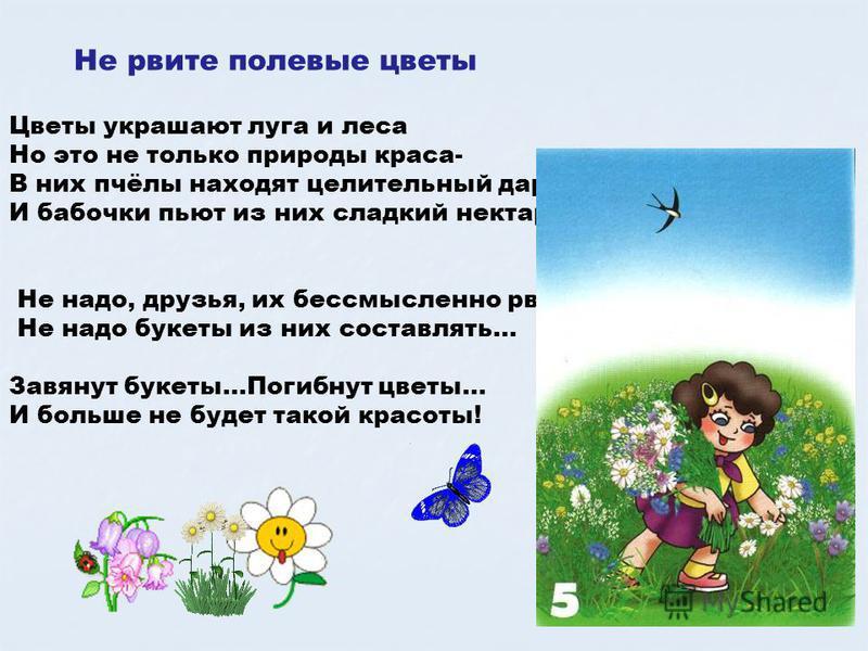 Не рвите полевые цветы Цветы украшают луга и леса Но это не только природы краса- В них пчёлы находят целительный дар, И бабочки пьют из них сладкий нектар. Не надо, друзья, их бессмысленно рвать, Не надо букеты из них составлять… Завянут букеты…Поги