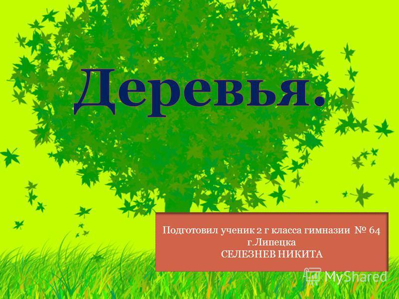 Подготовил ученик 2 г класса гимназии 64 г.Липецка СЕЛЕЗНЕВ НИКИТА