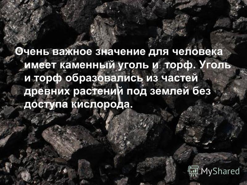 Очень важное значение для человека имеет каменный уголь и торф. Уголь и торф образовались из частей древних растений под землей без доступа кислорода.