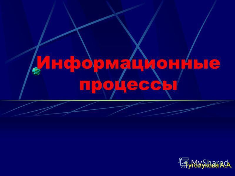 Информационные процессы Туголукова А.А.