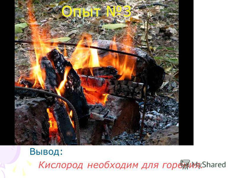 Опыт 3 Вывод: Кислород необходим для горения.