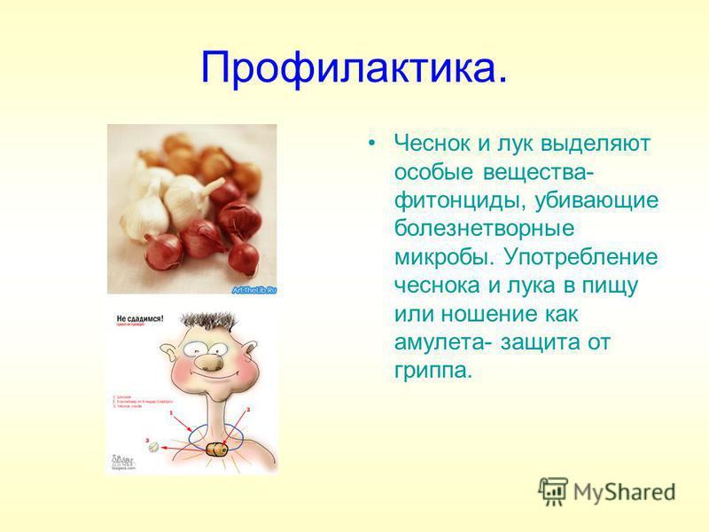 Профилактика. Чеснок и лук выделяют особые вещества- фитонциды, убивающие болезнетворные микробы. Употребление чеснока и лука в пищу или ношение как амулета- защита от гриппа.