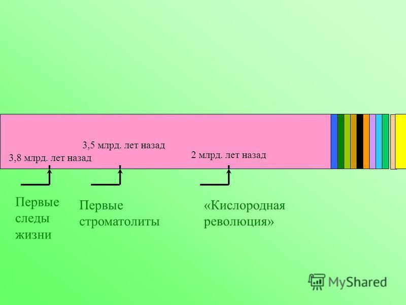 Первые следы жизни 3,8 млрд. лет назад Первые строматолиты 3,5 млрд. лет назад «Кислородная революция» 2 млрд. лет назад