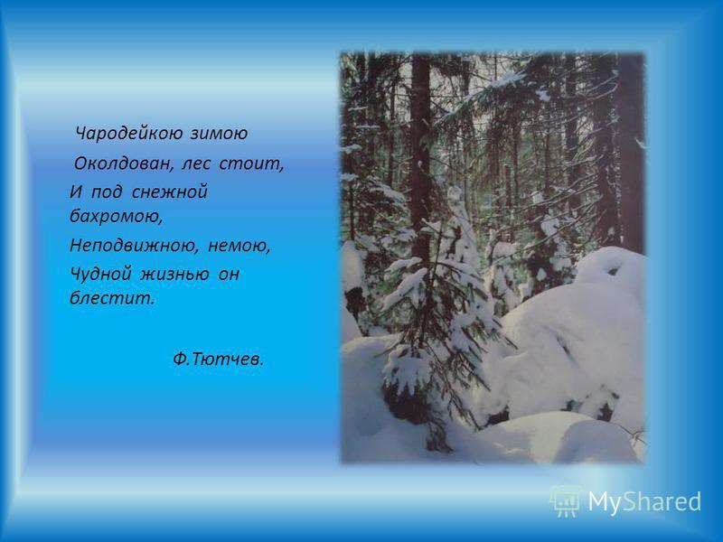 Ф.Тютчев. Чародейкою зимою Околдован, лес стоит, И под снежной бахромою, Неподвижною, немою, Чудной жизнью он блестит.