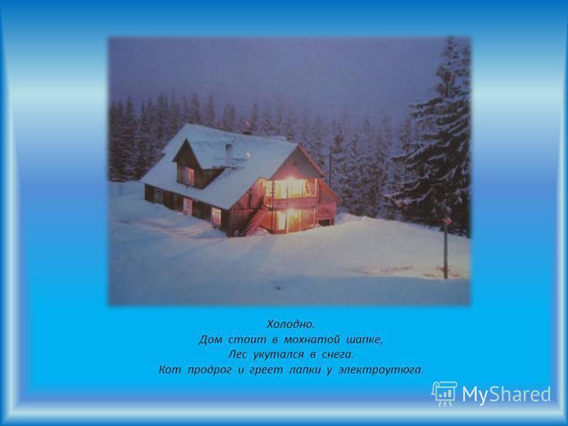 Холодно. Дом стоит в мохнатой шапке, Лес укутался в снега. Кот продрог и греет лапки у электроутюга.