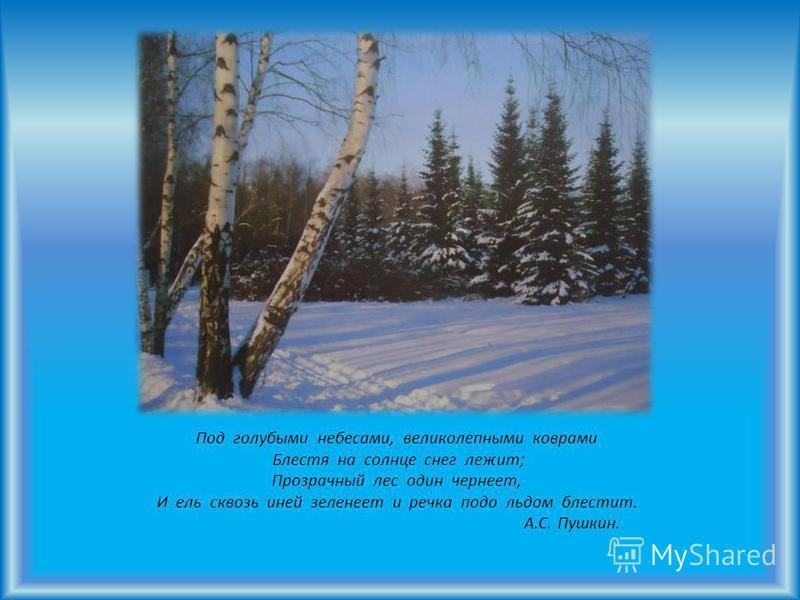 Под голубыми небесами, великолепными коврами Блестя на солнце снег лежит; Прозрачный лес один чернеет, И ель сквозь иней зеленеет и речка подо льдом блестит. А.С. Пушкин.