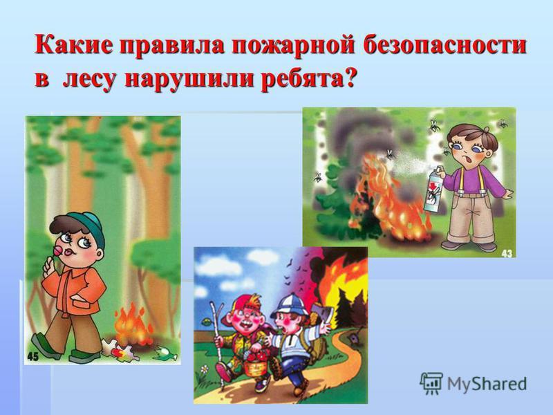 Какие правила пожарной безопасности в лесу нарушили ребята?