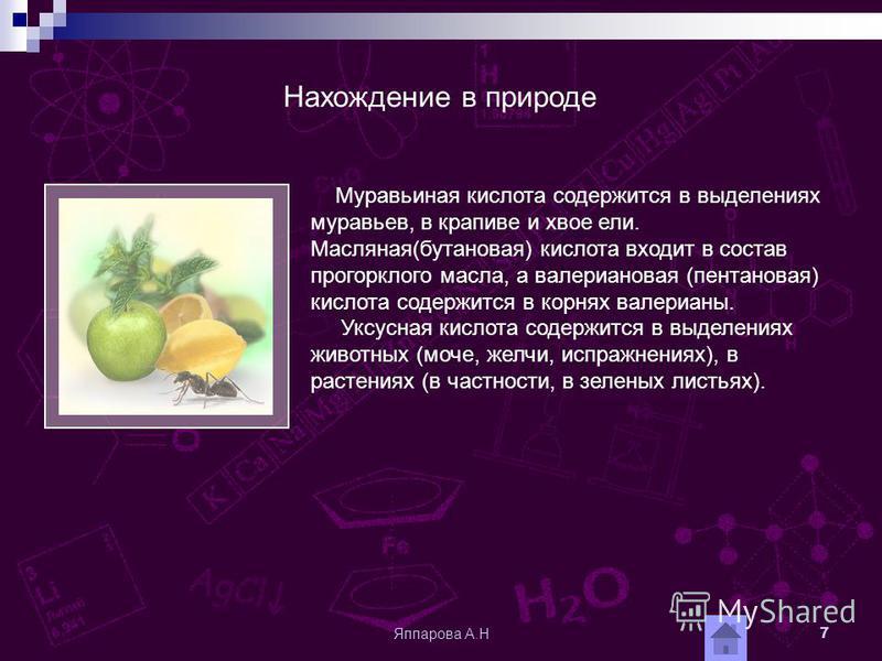 Яппарова А.Н 7 Муравьиная кислота содержится в выделениях муравьев, в крапиве и хвое ели. Масляная(бутановая) кислота входит в состав прогорклого масла, а валериановая (пентановая) кислота содержится в корнях валерианы. Уксусная кислота содержится в