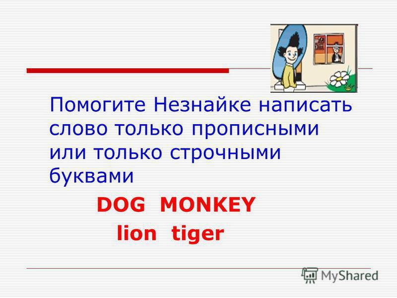 Помогите Незнайке написать слово только прописными или только строчными буквами DOG MONKEY lion tiger