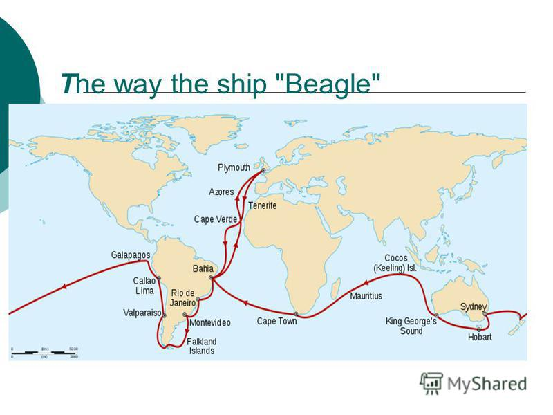 The way the ship Beagle