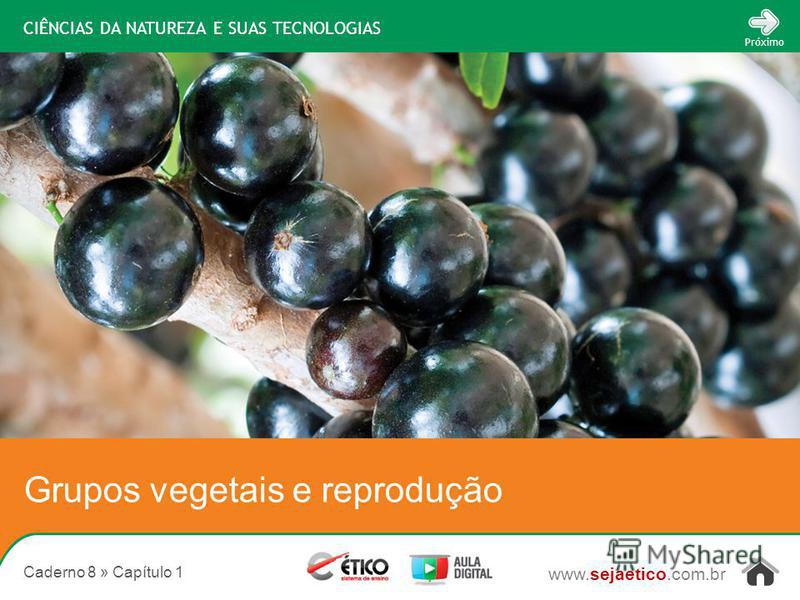 CIÊNCIAS DA NATUREZA E SUAS TECNOLOGIAS www.sejaetico.com.br Próximo Caderno 8 » Capítulo 1 Grupos vegetais e reprodução