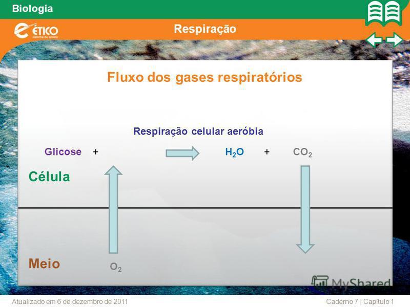 Biologia Respiração Fluxo dos gases respiratórios Respiração celular aeróbia Glicose+ Meio Célula H2OH2O+CO 2 O2O2 Caderno 7 | Capítulo 1Atualizado em 6 de dezembro de 2011