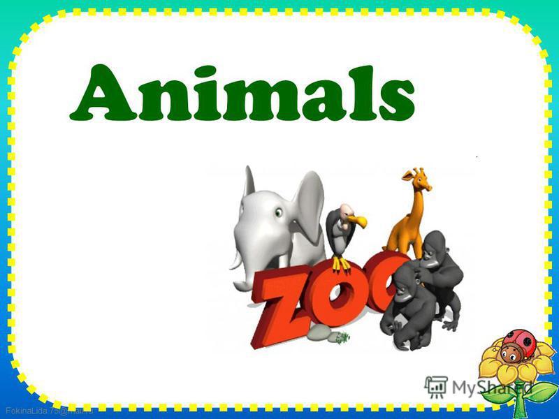 FokinaLida.75@mail.ru Animals