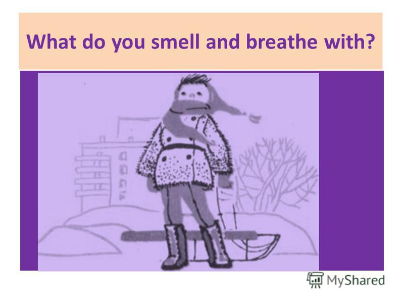 What do you smell and breathe with?