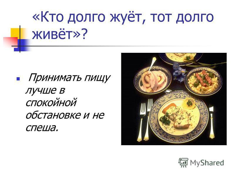 «Кто долго жуёт, тот долго живёт»? Принимать пищу лучше в спокойной обстановке и не спеша.