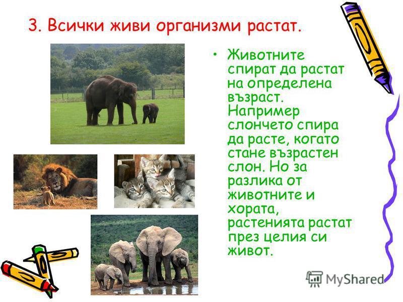 3. Всички живи организми растат. Животните спират да растат на определена възраст. Например слончето спира да расте, когато стане възрастен слон. Но за разлика от животните и хората, растенията растат през целия си живот.