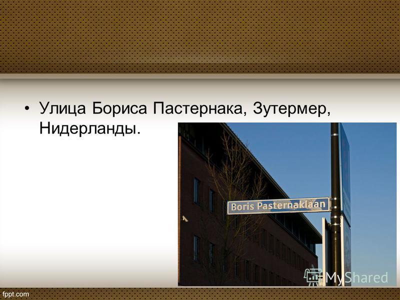 Улица Бориса Пастернака, Зутермер, Нидерланды.