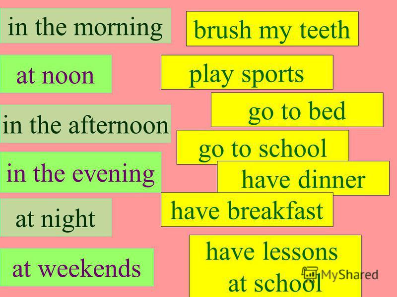 in the morning at noon in the afternoon at weekends in the evening at night brush my teeth play sports go to school have dinner go to bed have breakfast have lessons at school in the morning have breakfast