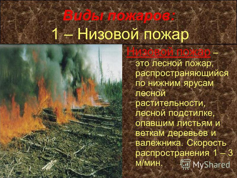 Виды пожаров: Низовой пожар – это лесной пожар, распространяющийся по нижним ярусам лесной растительности, лесной подстилке, опавшим листьям и веткам деревьев и валежника. Скорость распространения 1 – 3 м/мин. 1 – Низовой пожар