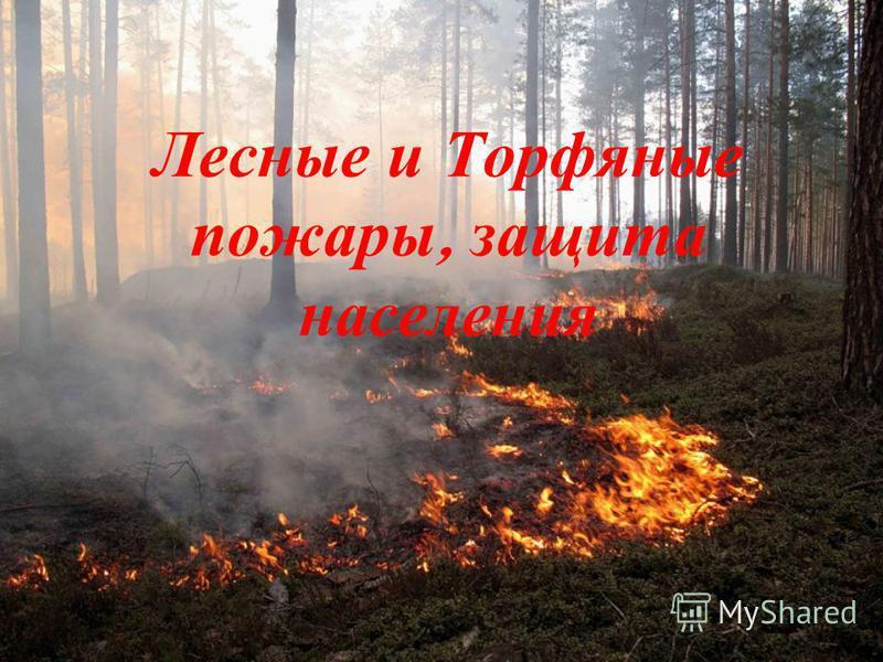 Лесные и Т орфяные пожары, защита населения