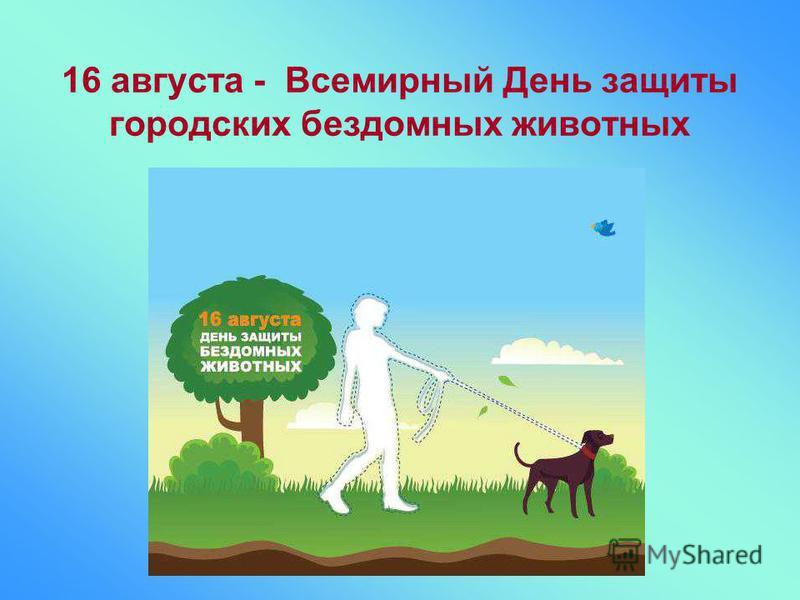 16 августа - Всемирный День защиты городских бездомных животных