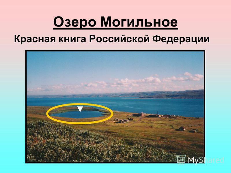 Озеро Могильное Красная книга Российской Федерации