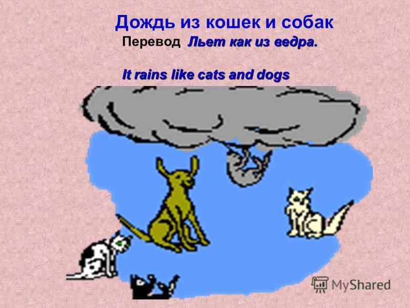Дождь из кошек и собак Льет как из ведра. Перевод Льет как из ведра. It rains like cats and dogs
