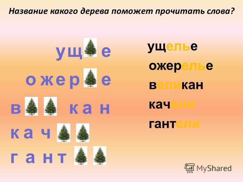 р пак рпа цик рд щ м т Название какого дерева поможет прочитать слова? мель щель трель дрель кисель апрель капель
