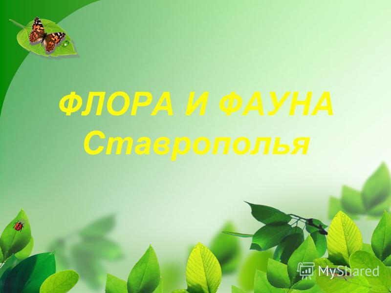 ФЛОРА И ФАУНА Ставрополья