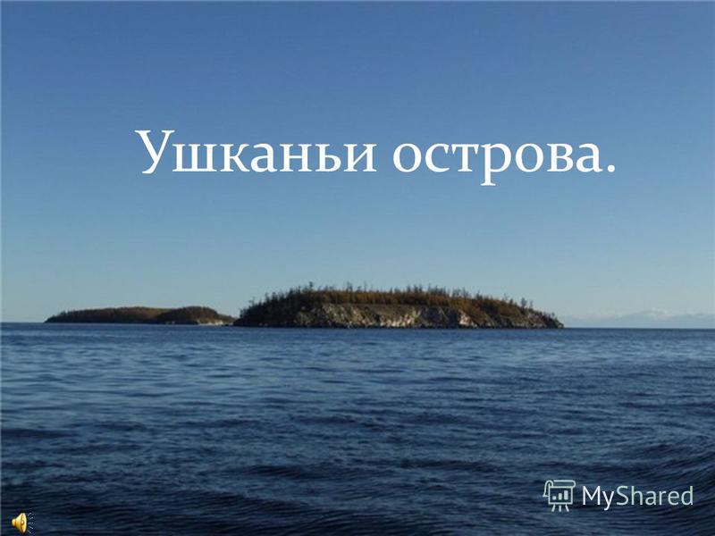 Ушканьи острова.