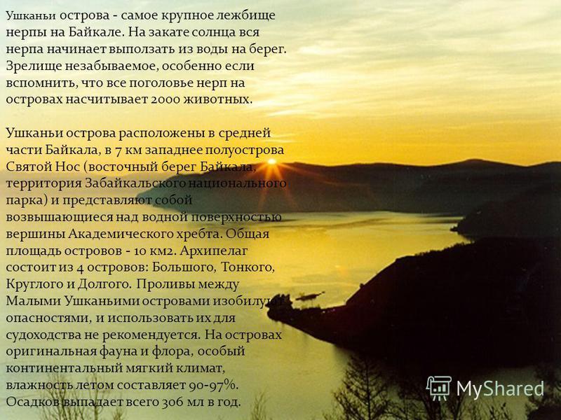 Ушканьи острова - самое крупное лежбище нерпы на Байкале. На закате солнца вся нерпа начинает выползать из воды на берег. Зрелище незабываемое, особенно если вспомнить, что все поголовье нерп на островах насчитывает 2000 животных. Ушканьи острова рас
