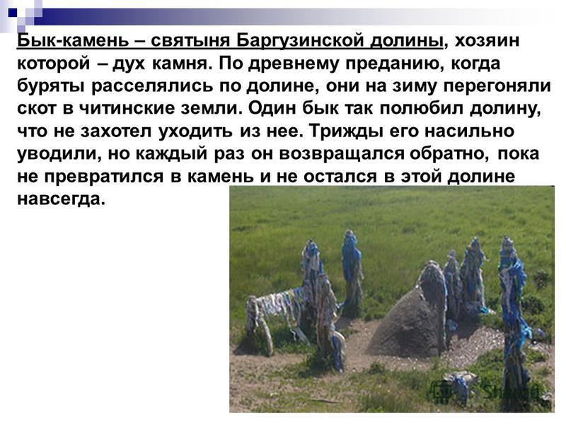 Бык-камень – святыня Баргузинской долины, хозяин которой – дух камня. По древнему преданию, когда буряты расселялись по долине, они на зиму перегоняли скот в читинские земли. Один бык так полюбил долину, что не захотел уходить из нее. Трижды его наси