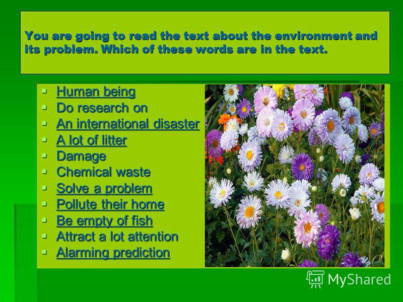 You are going to read the text about the environment and its problem. Which of these words are in the text. Human being Human being Do research on Do research on An international disaster An international disaster A lot of litter A lot of litter Dama
