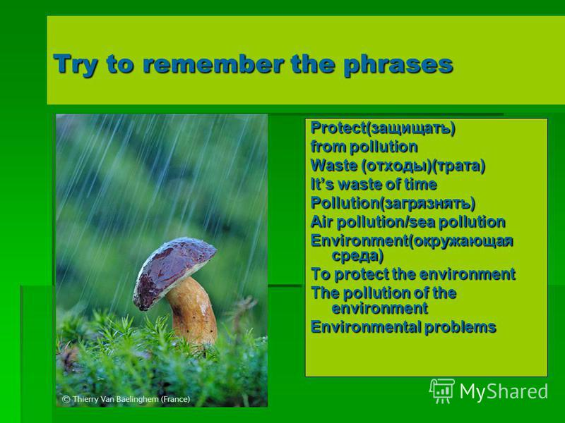 Try to remember the phrases Protect(защищать) from pollution Waste (отходы)(трата) Its waste of time Pollution(загрязнять) Air pollution/sea pollution Environment(окружающая среда) To protect the environment The pollution of the environment Environme