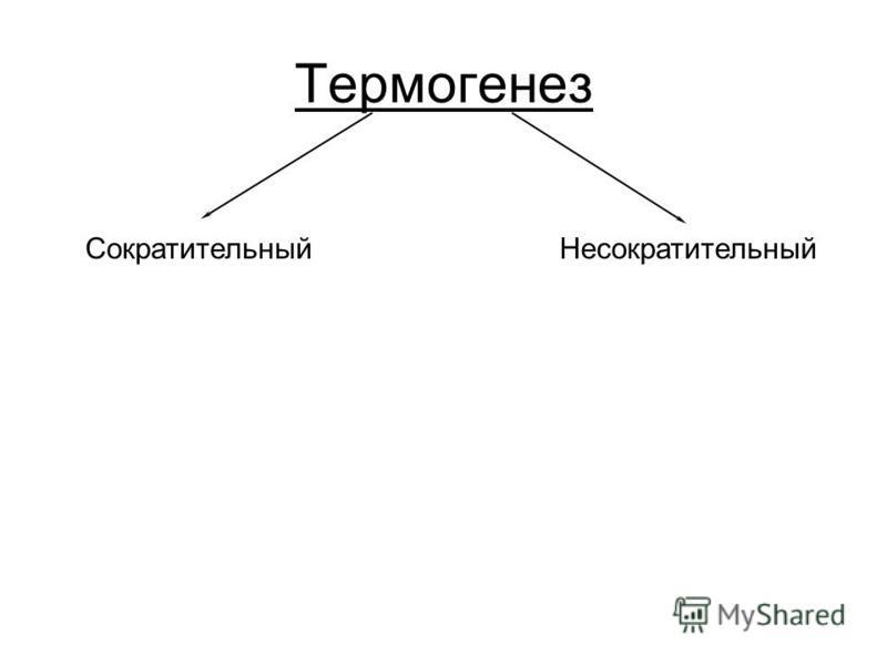 Термогенез Сократительный Несократительный