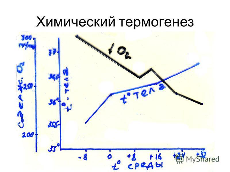 Химический термогенез