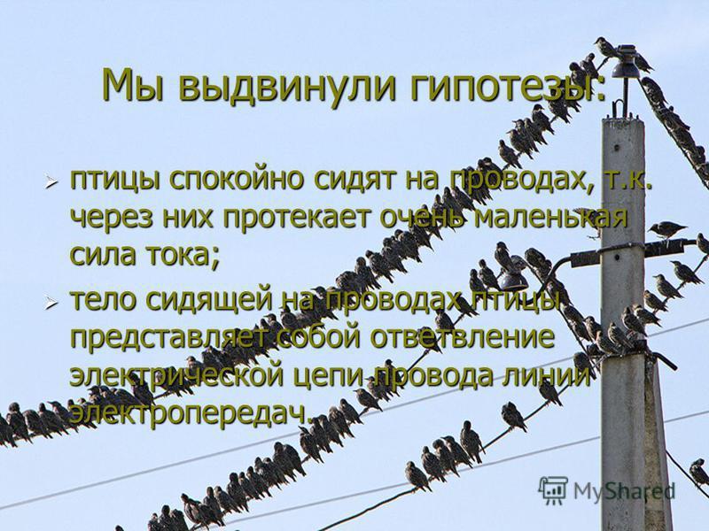 Мы выдвинули гипотезы: птицы спокойно сидят на проводах, т.к. через них протекает очень маленькая сила тока; птицы спокойно сидят на проводах, т.к. через них протекает очень маленькая сила тока; тело сидящей на проводах птицы представляет собой ответ