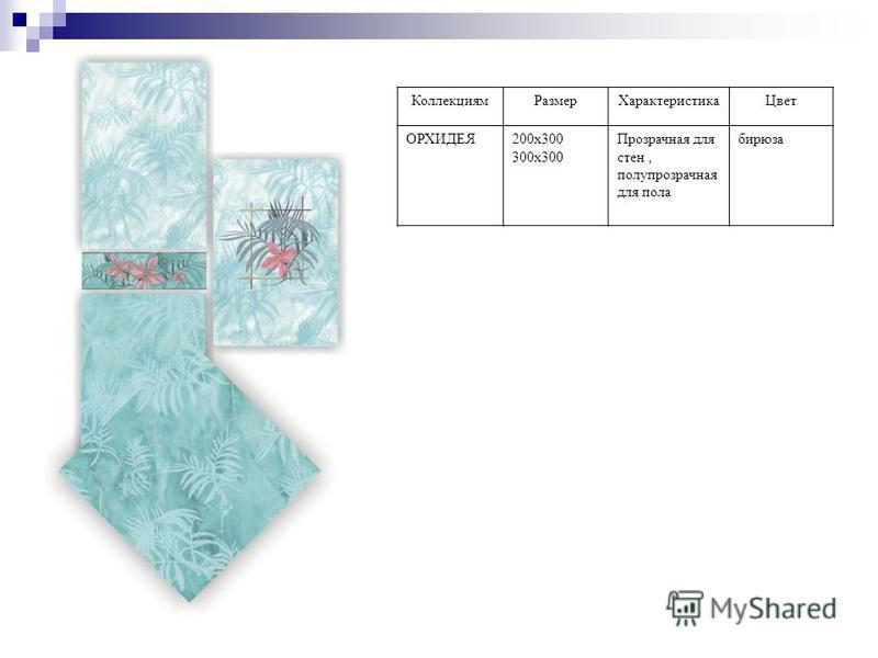 Коллекциям РазмерХарактеристика Цвет ОРХИДЕЯ200 х 300 300 х 300 Прозрачная для стен, полупрозрачная для пола бирюза