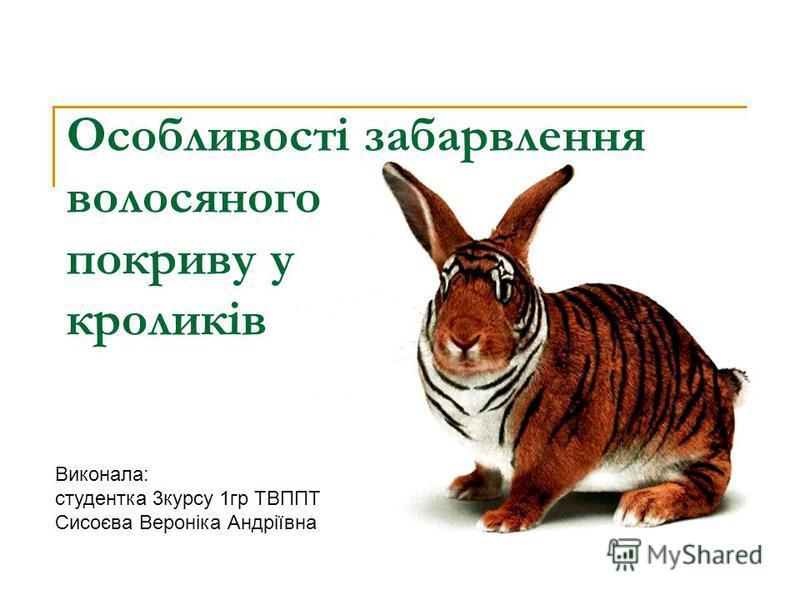 Особливості забарвлення волосяного покриву у кроликів Виконала: студентка 3курсу 1гр ТВППТ Сисоєва Вероніка Андріївна