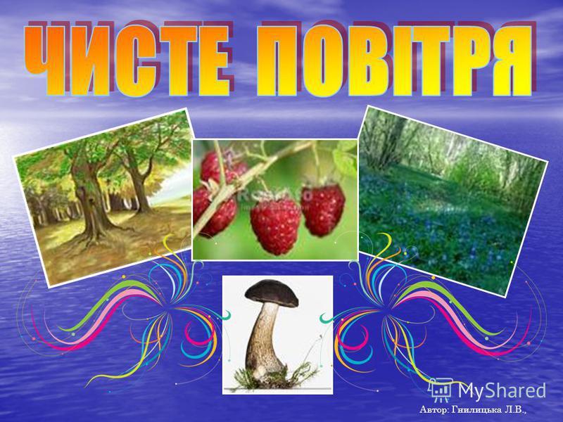 Автор: Гнилицька Л.В.,
