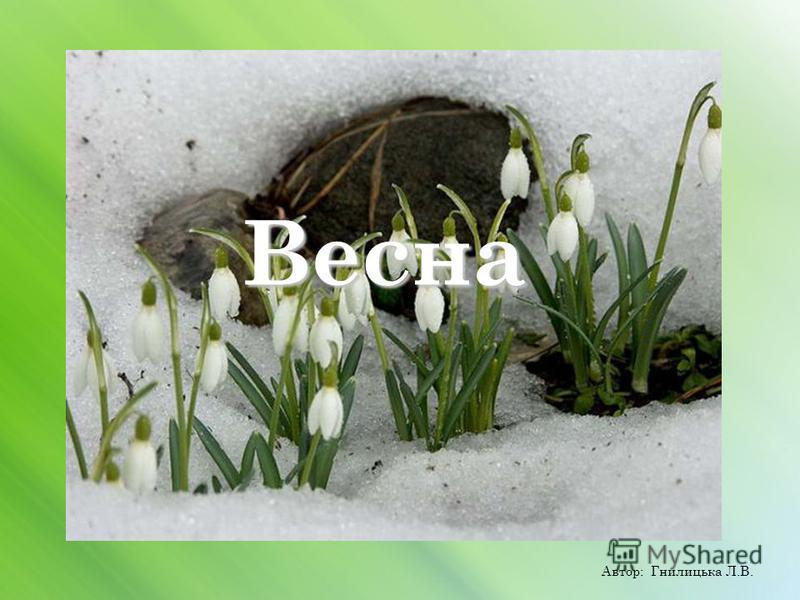 Весна Автор: Гнилицька Л.В.