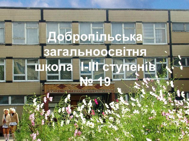 Добропільська загальноосвітня школа I-III ступенів 19