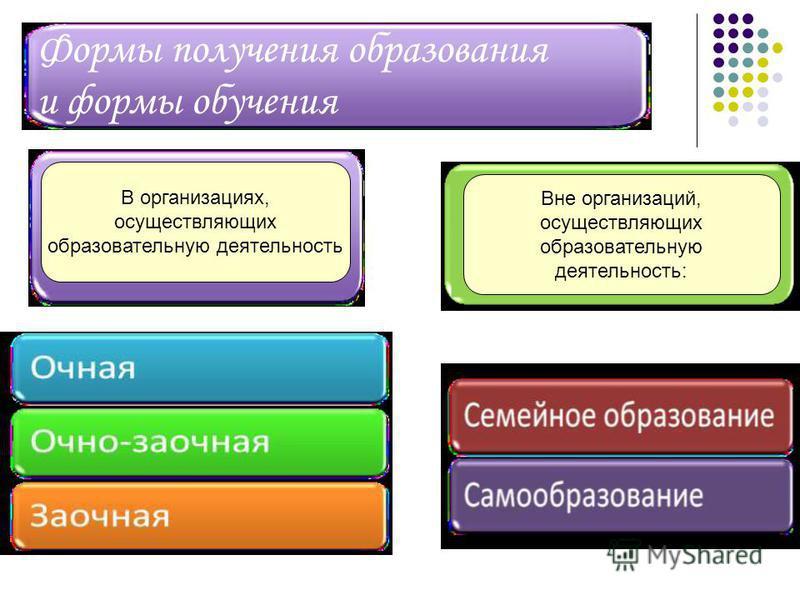 Формы получения образования и формы обучения Вне организаций, осуществляющих образовательную деятельность: В организациях, осуществляющих образовательную деятельность