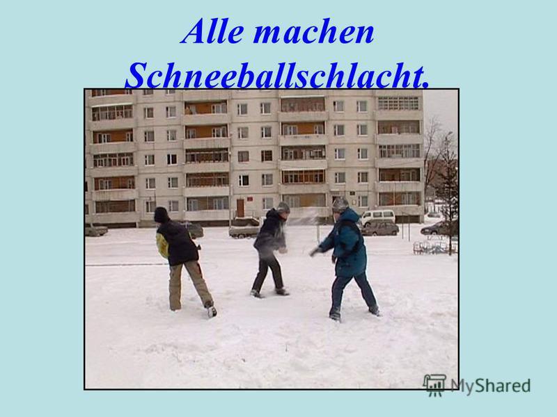 Alle machen Schneeballschlacht.