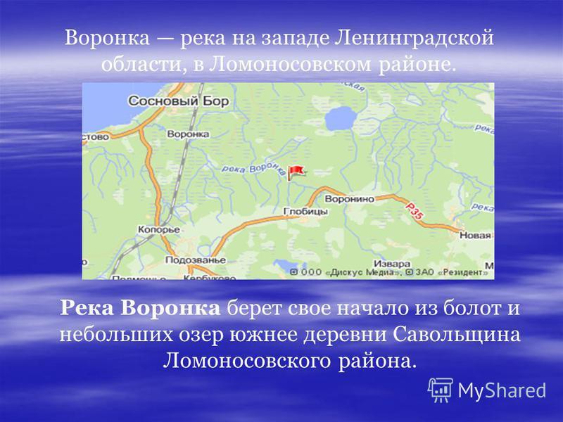 Воронка река на западе Ленинградской области, в Ломоносовском районе. Река Воронка берет свое начало из болот и небольших озер южнее деревни Савольщина Ломоносовского района.