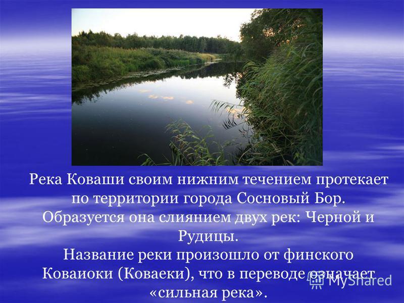Река Коваши своим нижним течением протекает по территории города Сосновый Бор. Образуется она слиянием двух рек: Черной и Рудицы. Название реки произошло от финского Коваиоки (Коваеки), что в переводе означает «сильная река».