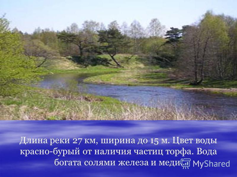 Длина реки 27 км, ширина до 15 м. Цвет воды красно-бурый от наличия частиц торфа. Вода богата солями железа и меди.