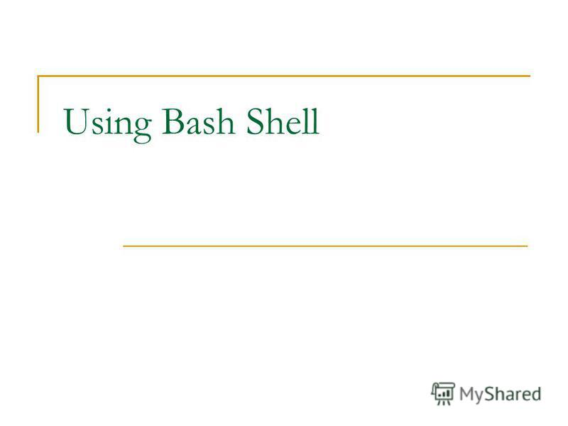 Using Bash Shell